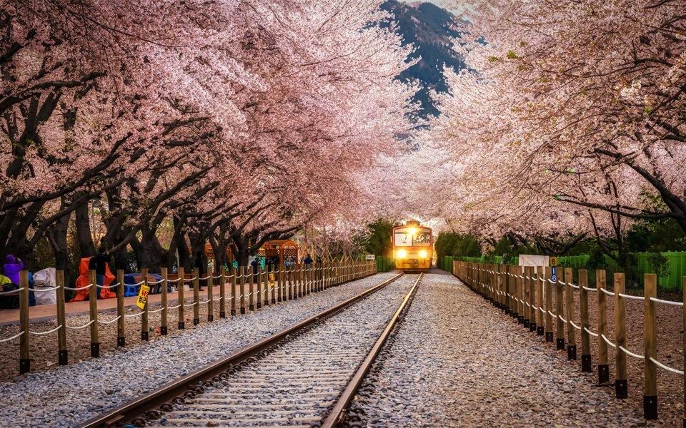 11 Must See Beautiful Destinations In Korea