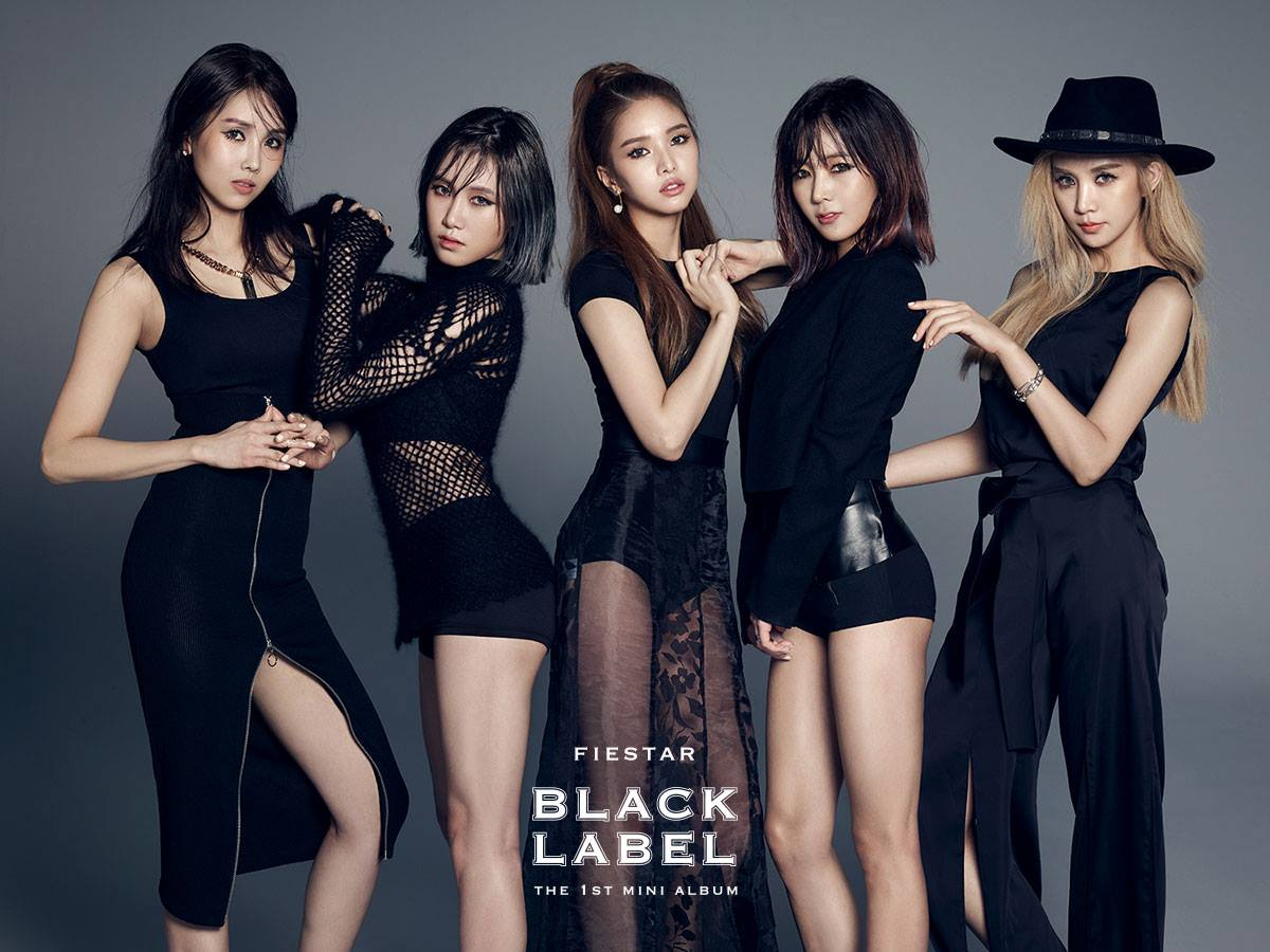 http://cdn.koreaboo.com/wp-content/uploads/2015/02/FIESTAR-Black-Label.jpg