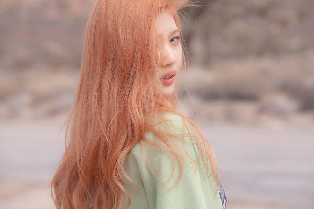Red Velvet4