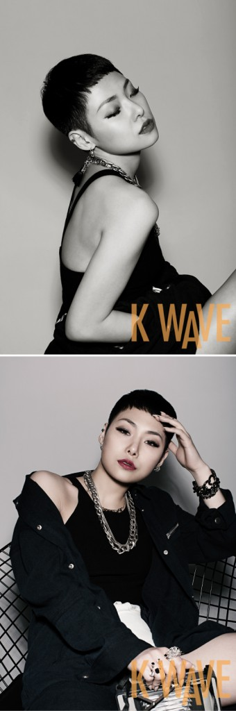 Cheetah for KWAVE