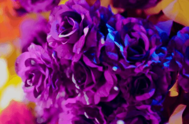 bae bae mv purple flowers and liquid
