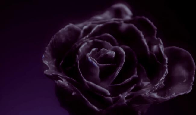 bae bae mv black rose