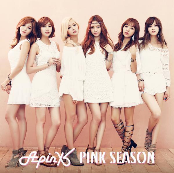 Apink PINK SEASON 1