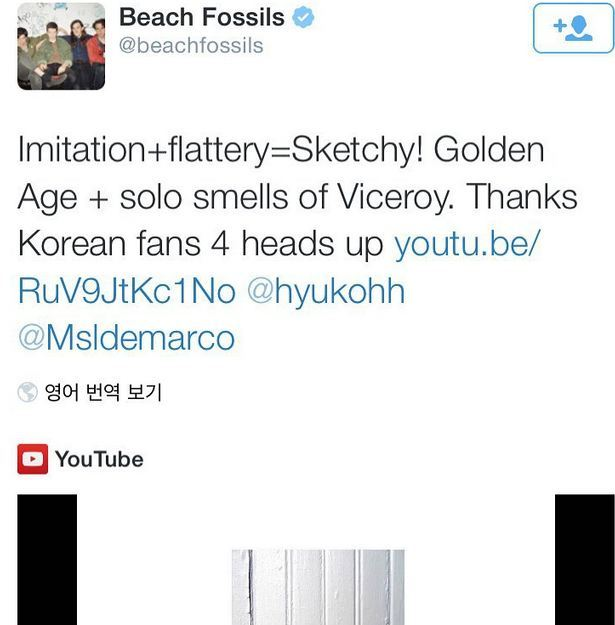 beachfossils