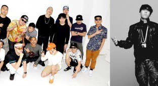 Dok2 and the cohort