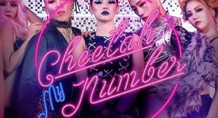 cheetah_mynumber1
