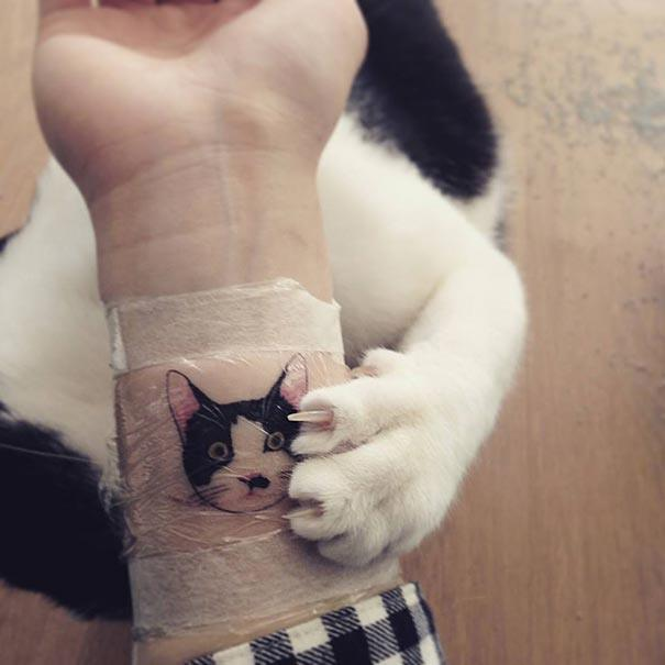 Illegal Cat Tattoo