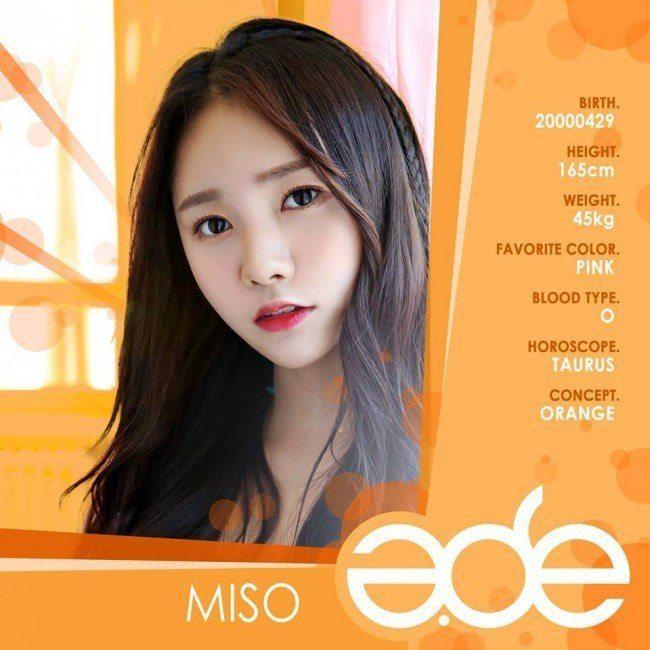 ade-miso1
