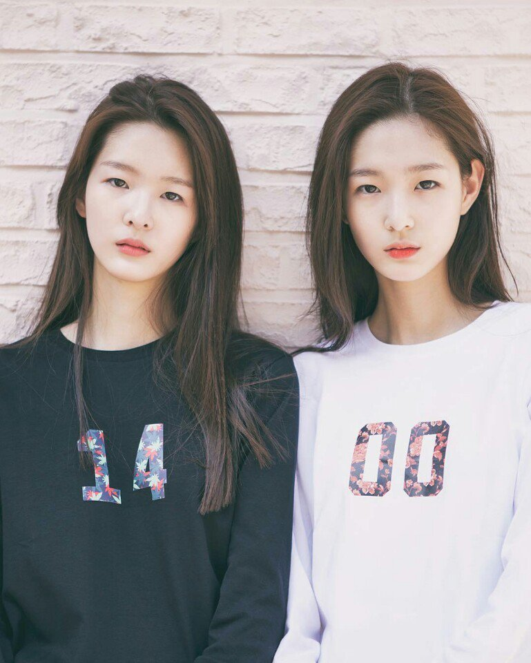 c08f40306 All Of Korea Is Falling In Love With These 18-Year-Old Twin Sisters ...