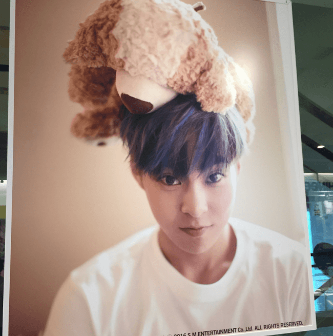 Image: EXO'S Xiumin Looking Adorable with a Teddy Bear on his Head / SM Entertainment