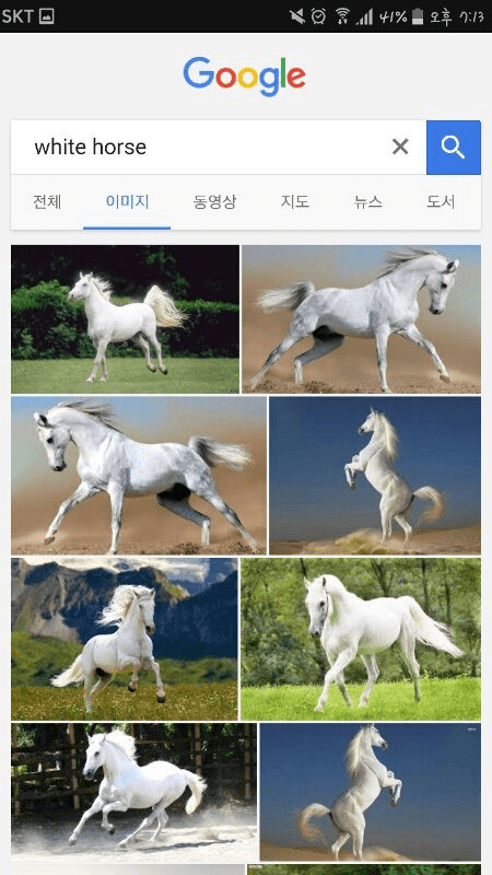 World google searches white horse