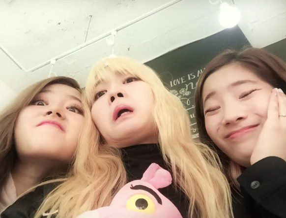 TWICE (Silly photos)/ Pann