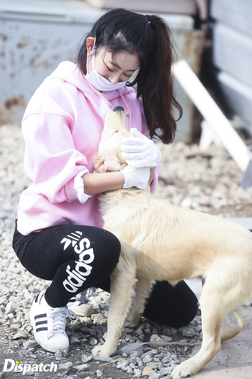 Jisoo giving a puppy at the shelter a warm hug.