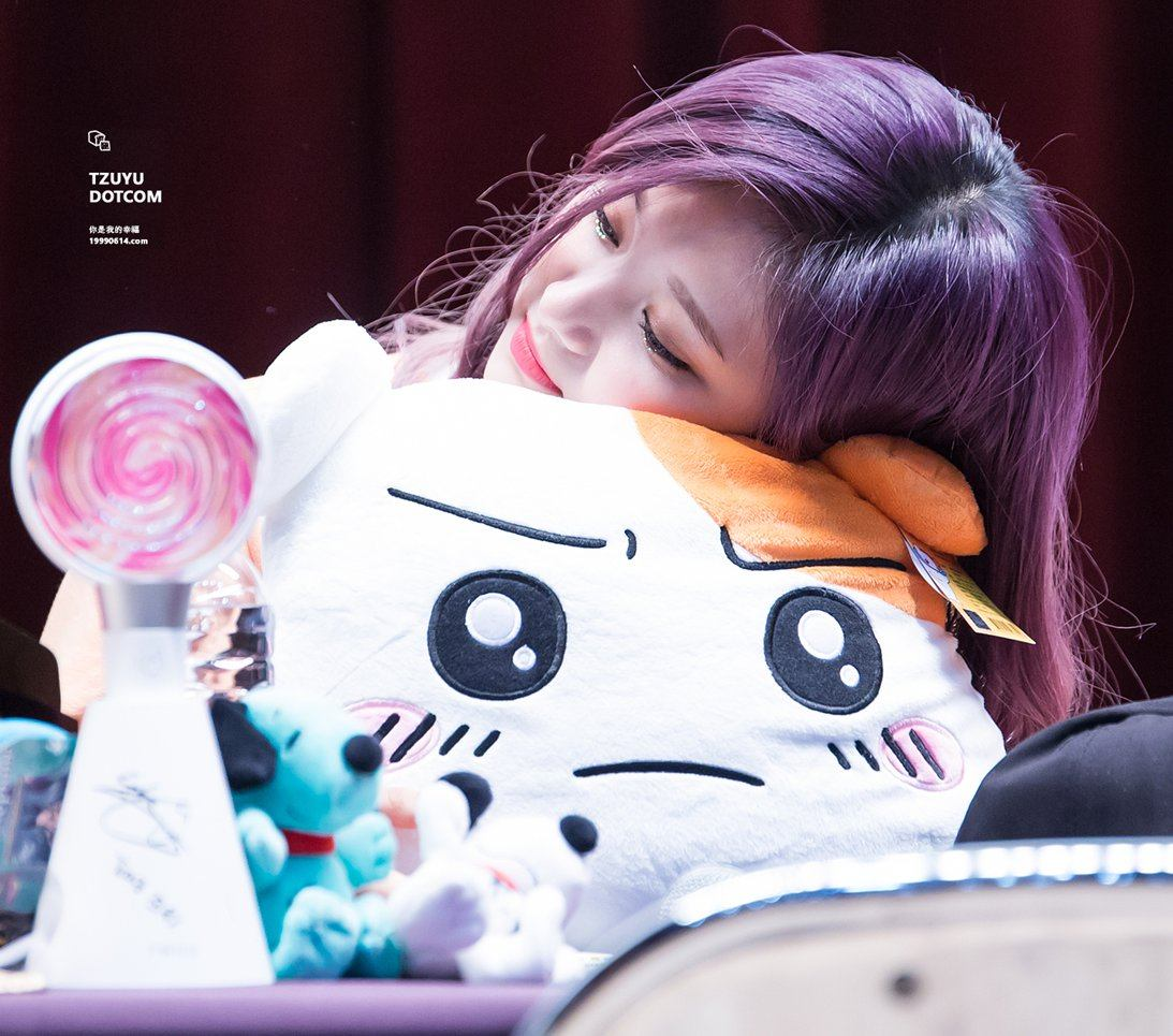 Tzu Yu and hamtaro toy
