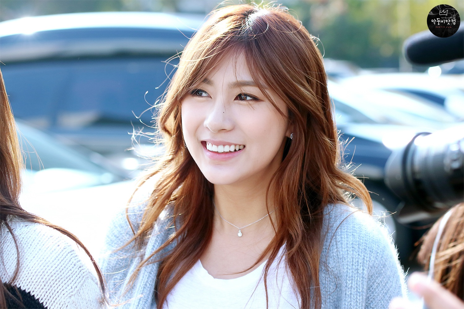 Pink Blossom - Apink - Asiachan KPOP Image Board