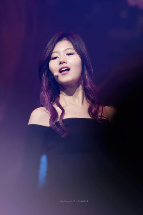 Sana S Visuals And Dance Moves Stun Audiences Koreaboo
