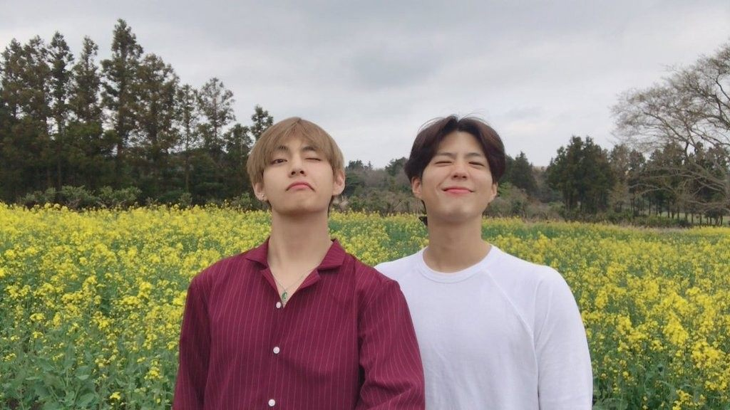 BTS V and Park Bogum Share Photos of Their Day Together On Jeju Island