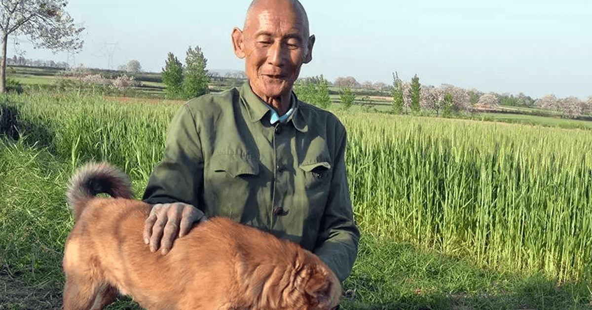 This Legless Man Farmed And Took Care Of His Family For 40 Years