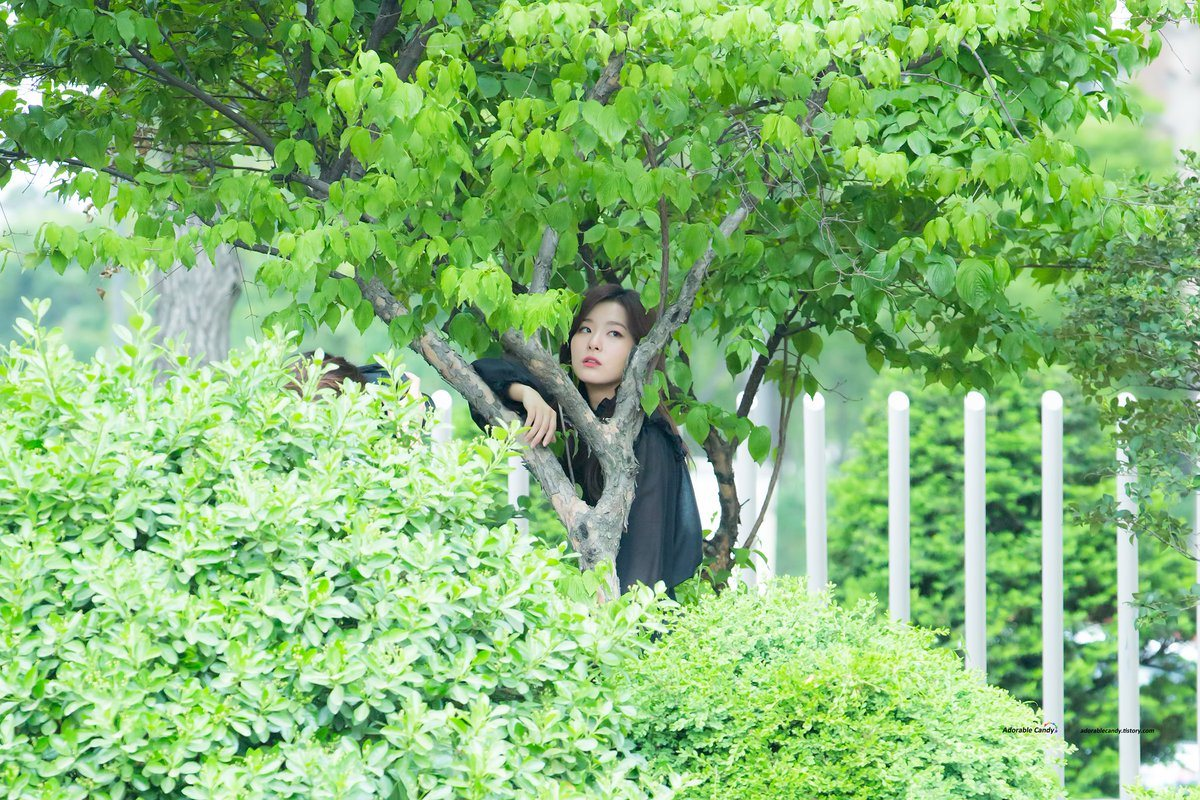 Fans spotted Red Velvet Seulgi Hiding In The Bushes