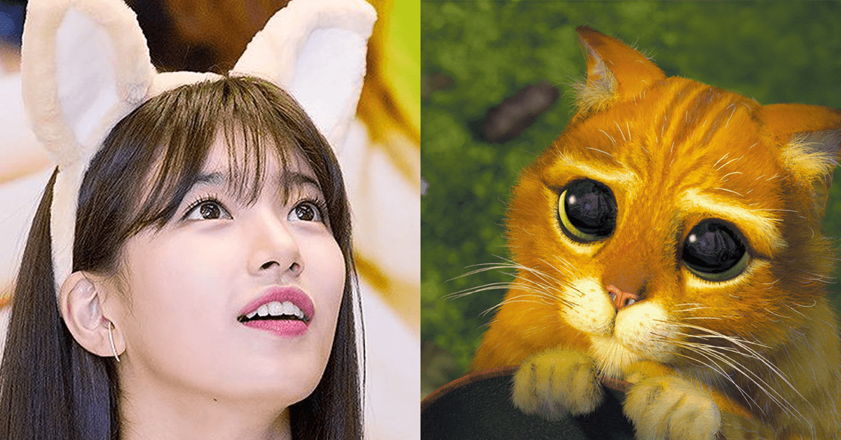 6 Idols Who Look Just Like Puss in Boots