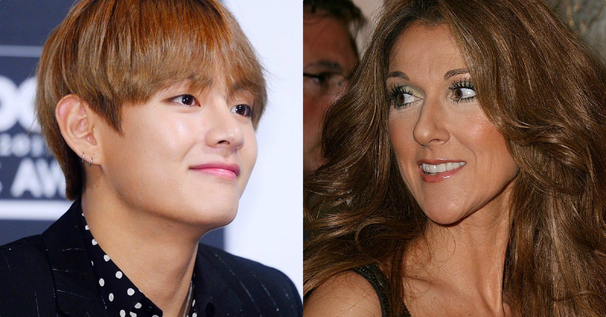 Celine Dion Personally Invited BTS To Attend Her Concert