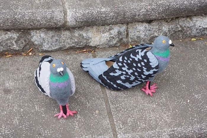 This Japanese Woman Is Going Viral For Her Amazing Pigeon Shoes